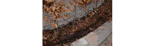 Drypvandingssystem til hække mv
